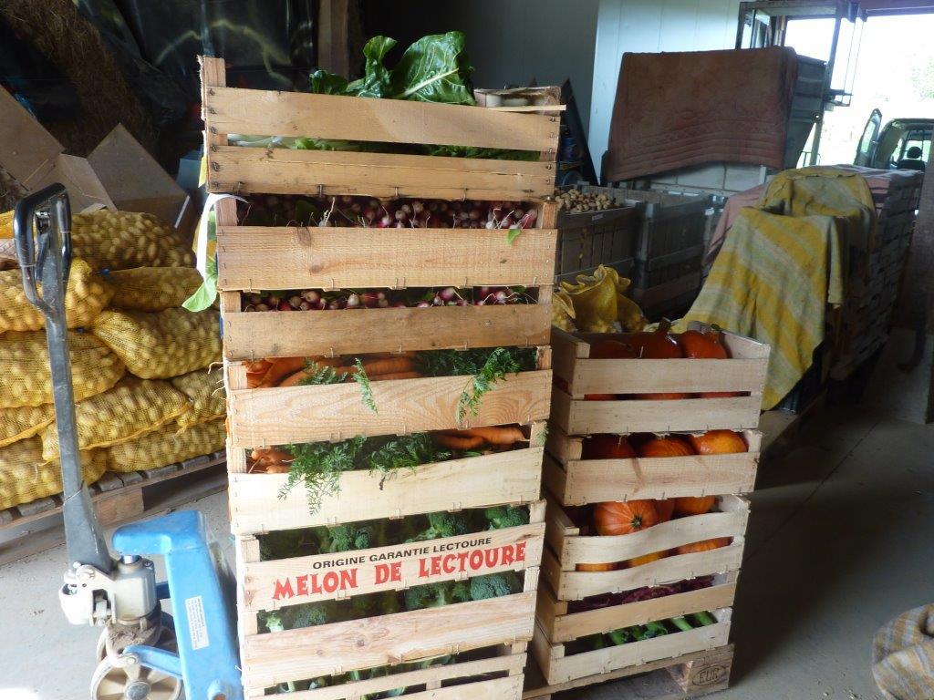 livraison de panier de légumes bio