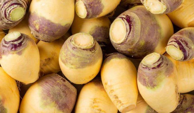 Une nouvelle fiche légume : le rutabaga